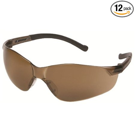 Inhibitor Safety Glasses with an Awesome Smoke Colored Frame and Lens