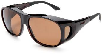 Summerwood Tortoise and Amber Sunglasses by Haven